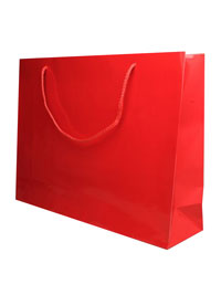 Gift Bag / 28x36x10cm Red glossy gift bag.