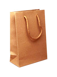 Gift Bag / Natural brown gift bag with corded handle 20x15x6