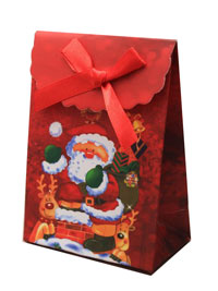 Xmas Gift Box  / Mini christmas santa gift box with velcro f