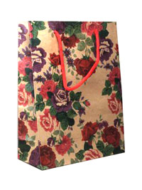 Gift Bag / 20x15x6cm Natural gift bag with floral print.