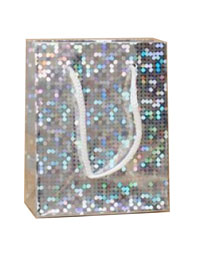 Gift Bag / Silver holographic foil gift bag. 10x8x6cm.