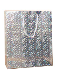 Gift Bag / Silver holographic foil gift bag. 21.5x18x7.5cm.