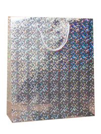 Gift Bag / Silver holographic foil gift bag. 27x23x7cm.