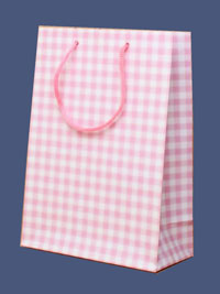 Clearance / Glossy pink gingham check gift bag. 20x14x7cm.