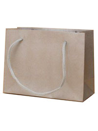 Gift Bag / 11x14x6cm.Silver printed kraft paper gift bag.