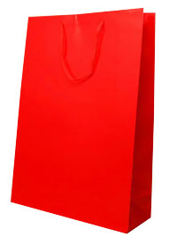 Gift Bag / Red gift bag with cord handles.