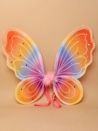 Fairy Wings / Rainbow coloured fairy wings 44x34cm