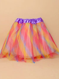 Tutu / Rainbow coloured net child size Tutu.