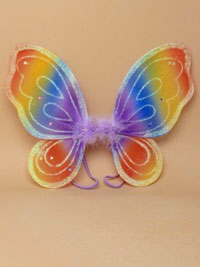 Fairy Wings / Rainbow coloured fairy wings 30x24cm
