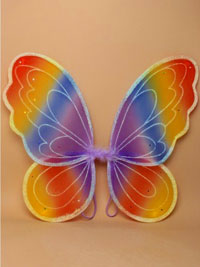 Fairy Wings / Rainbow coloured fairy wings 53x40cm.