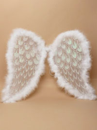Angel wings / white net, silver glitter, white feather trim.
